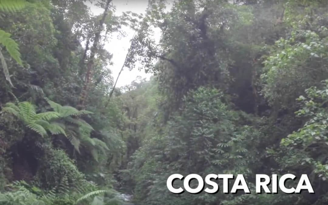 "Experience the ""Pura Vida"" in Costa Rica"