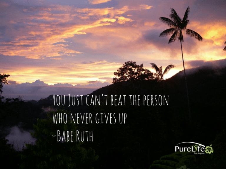 Babe Ruth meme - Pure Life Adventure in Costa Rica