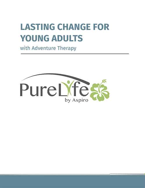 Pure Life Lasting Change for Young Adults PDF image
