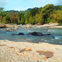 River. Wilderness and Adventure Therapy for Young Adults. Pure Life in Costa Rica.