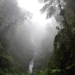 Misty waterfall. Wilderness and Adventure Therapy for Young Adults. Pure Life in Costa Rica.