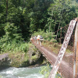 Students on bridge. Wilderness and Adventure Therapy for Young Adults. Pure Life in Costa Rica.
