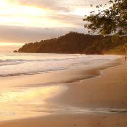 Beach shore. Wilderness and Adventure Therapy for Young Adults. Pure Life in Costa Rica.