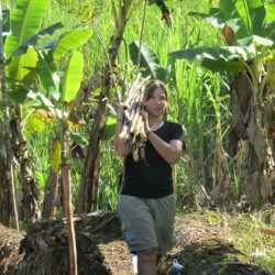 Student gathering sticks. Wilderness and Adventure Therapy for Young Adults. Pure Life in Costa Rica.