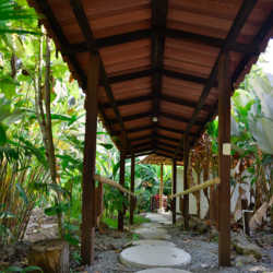 Base camp. Wilderness and Adventure Therapy for Young Adults. Pure Life in Costa Rica.