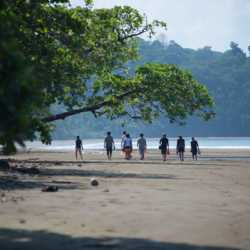 Students on beach. Wilderness and Adventure Therapy for Young Adults. Pure Life in Costa Rica.
