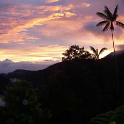 Paradise. Wilderness and Adventure Therapy for Young Adults. Pure Life in Costa Rica.