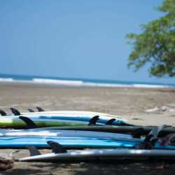 Surfboards. Wilderness and Adventure Therapy for Young Adults. Pure Life in Costa Rica.