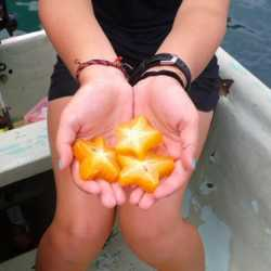 Student with fruit. Wilderness and Adventure Therapy for Young Adults. Pure Life in Costa Rica.