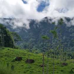 Mountain view. Wilderness and Adventure Therapy for Young Adults. Pure Life in Costa Rica.